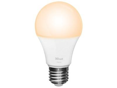 KlikAanKlikUit ZLED-2209 Ledlamp